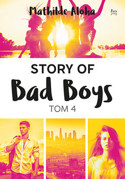 Story of Bad Boys.Tom 4
